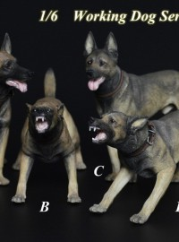 TOYS CITY 龍之城 TC-M9005 WORKING DOG SERIES 工作犬系列 - MALINOIS 比利時瑪連萊犬-01