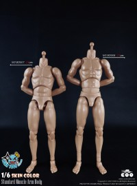 COOMODEL BD007、BD008 STANDARD MUSCLE ARM HIGH BODY 標準肌肉手臂型素體、高素體-01