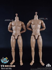 COOMODEL BD009、BD010 MUSCLE MALE BODY 肌肉型素體、高素體-01