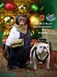 MR.Z MRZ023 PAN TROGLODYTES 黑猩猩 & BULLDOG 鬥牛犬-04