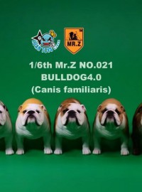 MR.Z No.21 BRITISH BULLDOG 英國鬥牛犬(4.0版)-01