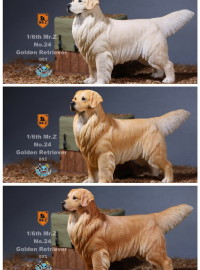 MR.Z MRZ024 GOLDEN RETRIEVER 黃金獵犬-0