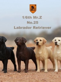 MR.Z MRZ025 LABRADOR RETRIEVER 拉不拉多犬-01