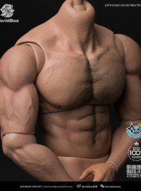 WORLD BOX AT-027 RIPPED MUSCULAR BODY 強壯肌肉素體-01