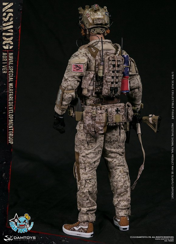 DAMTOYS 78065 US NSWDG(NAVAL SPECIAL WARFARE DEVELOPMENT GROUP) 美國海軍特種作戰發展大隊(AOR1迷彩版Ver.)-18