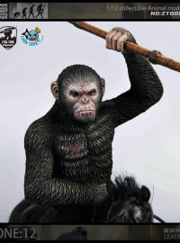 ZEUS TOYS ZT002A DAWN OF THE PLANET OF THE APES 猩球崛起 黎明的進擊 - CAESAR 凱撒(A款)-01